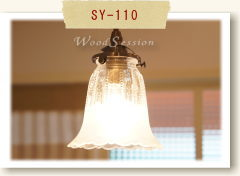 SY-110